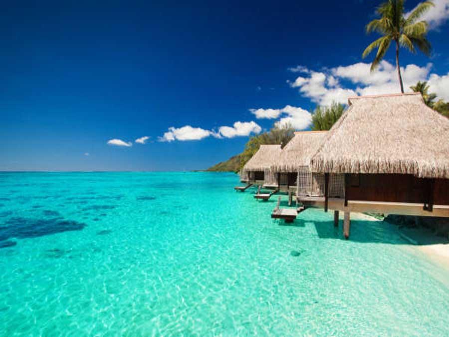 Tropici e mari esotici